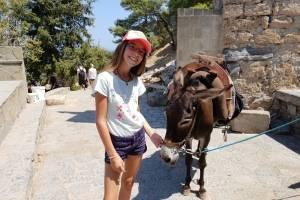 zeilen griekenland ezels