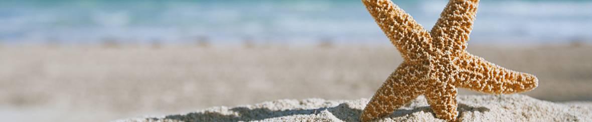 Zeiljacht huren Ibiza en Mallorca