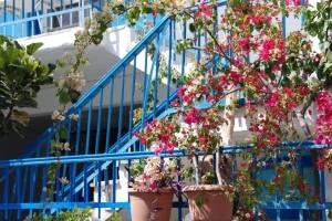 Zeilvakantie Griekenland bloemen